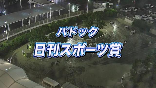 大井競馬場20160714.png